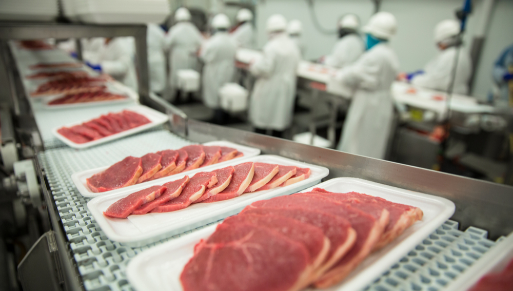 Food Safety In Meat Processing Plants